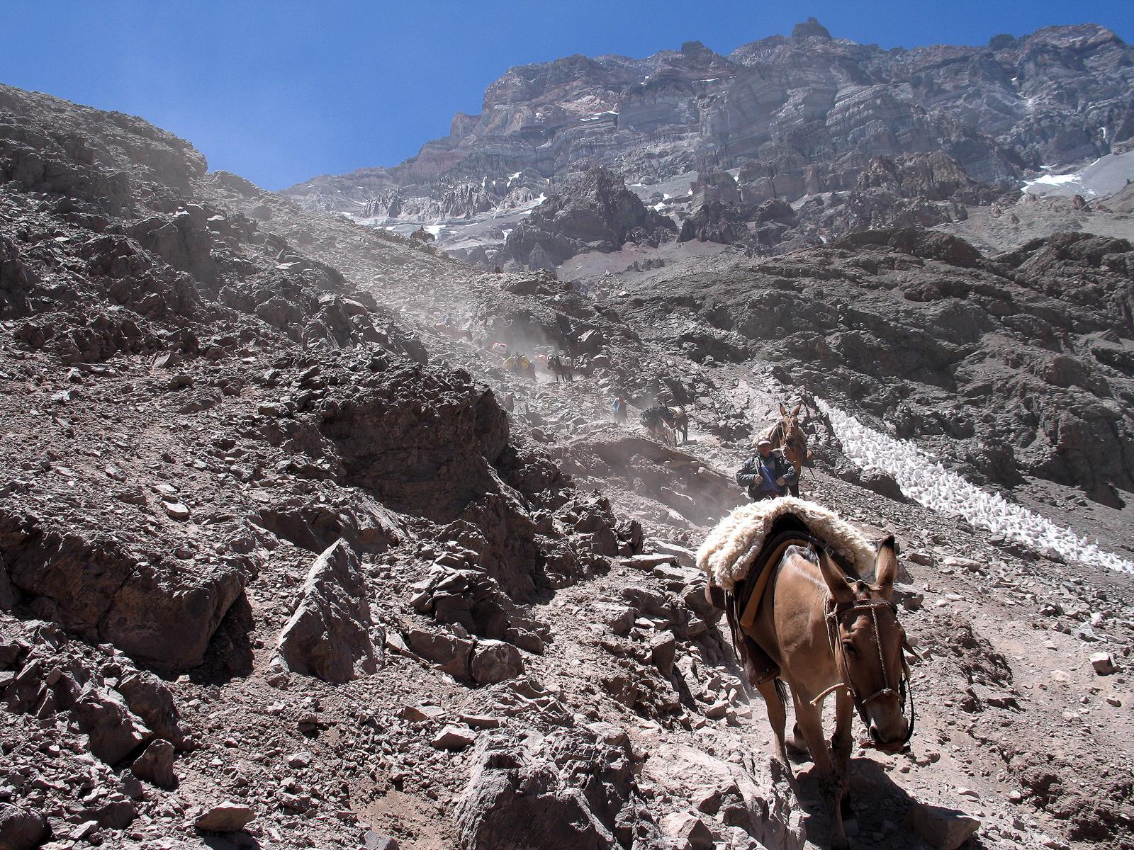 En la piel de la alpinista20