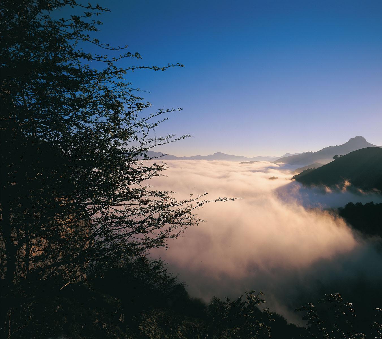 Valle del Nalón