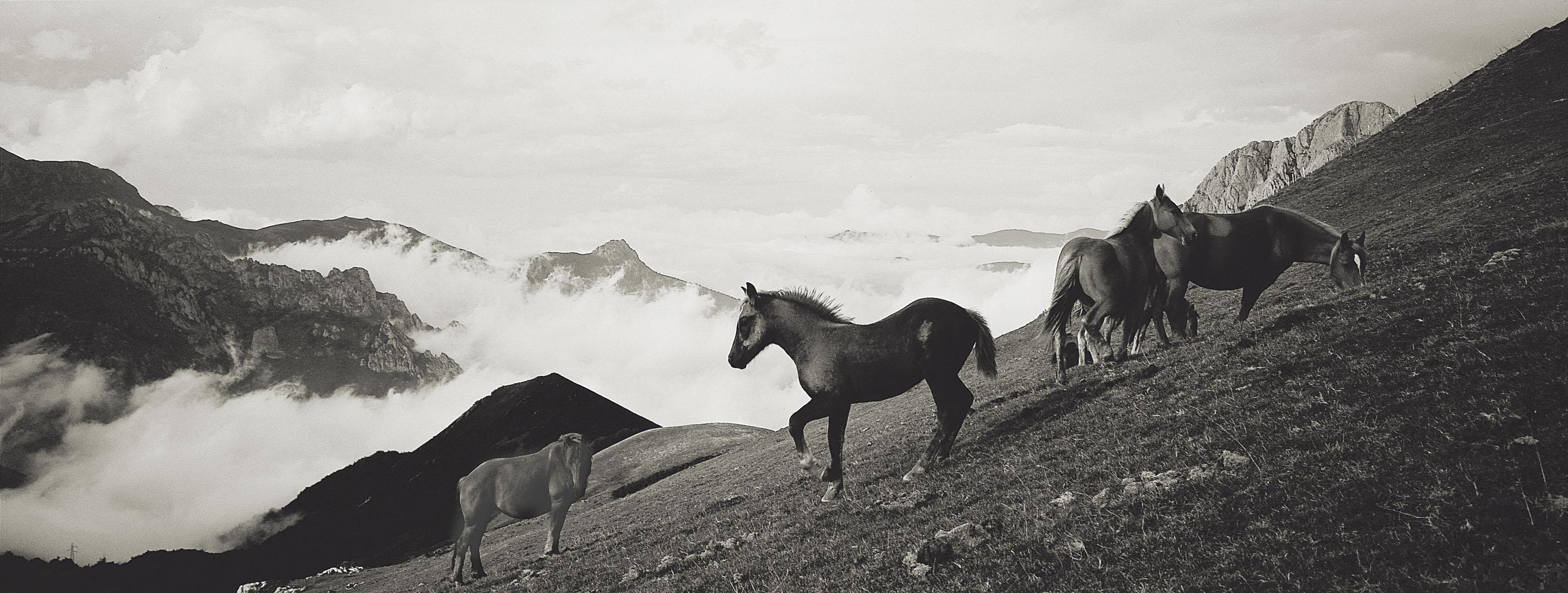 montana Central de Asturias08