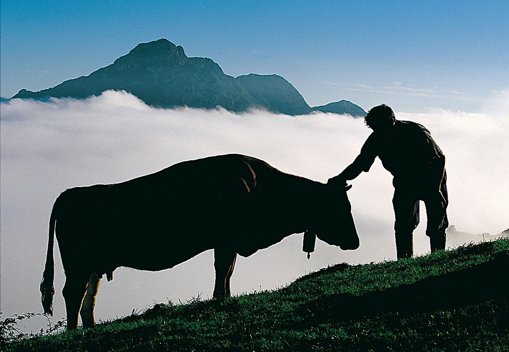 montana Central de Asturias23
